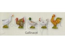 Gallinacei - Fontanini 19 CM