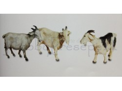 Capre assortite - set n. 3 pezzi - Landi animali 10 CM
