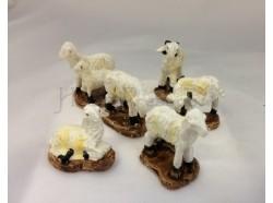 Pecore assortite 6 pz