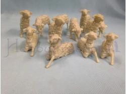 Pecore brunate assortite 12 pz