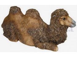 Cammello sdariato con testa dritta - Presepi Pigini cm. 30