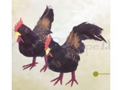 Gallo e gallina, colore nero - altezza cm 5