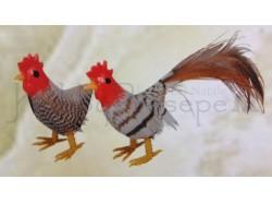 Gallo e gallina, colore scuro - altezza cm 4