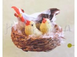 Nido con gallina bianca e pulcini
