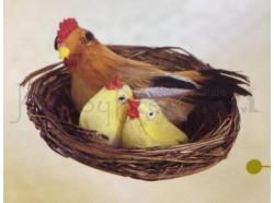 Nido con gallina rossa e pulcini