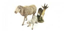 Pecore e capre