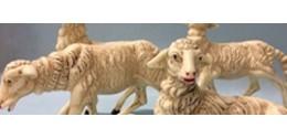 Animali in promozione
